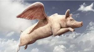 养猪专业户十诫