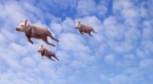 养猪专业户十诫-天方燕谈